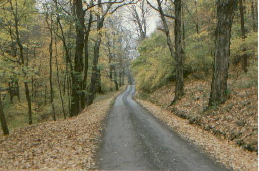 Old Mine Road